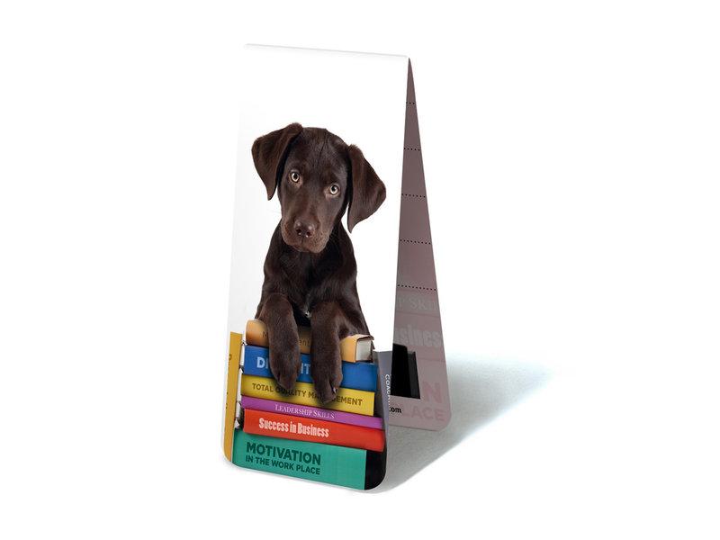 Magnetisches Lesezeichen, Welpe, Hund auf Büchern