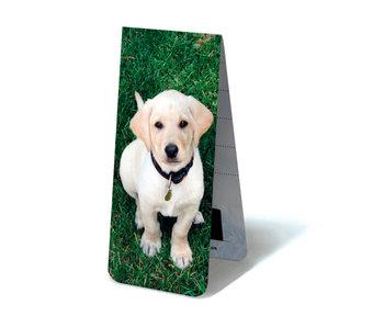 Marcador magnético, cachorro labrador