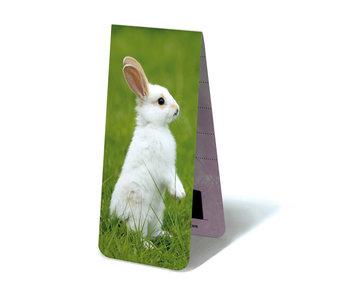 Marcador magnético, pequeño conejo blanco