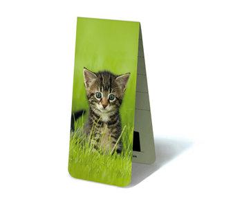 Marque-page magnétique, chaton, chatte dans l'herbe