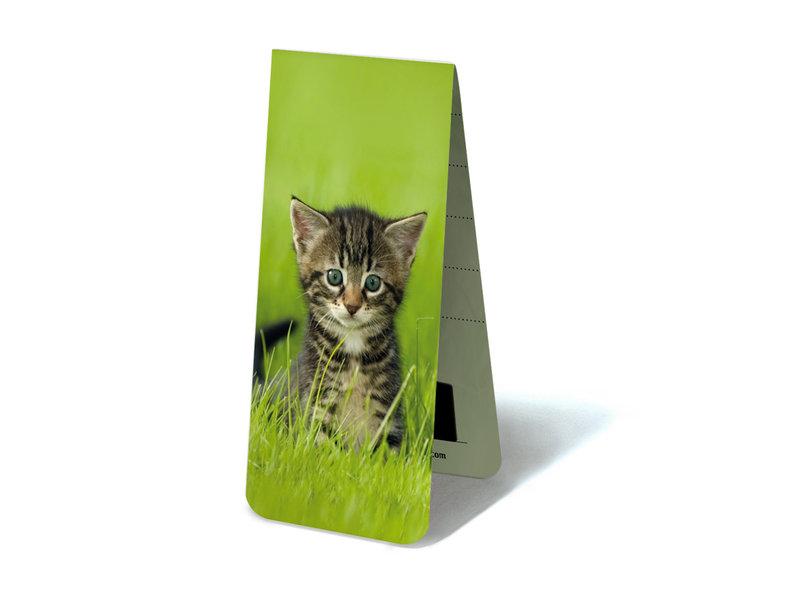 Magnetisches Lesezeichen, Kätzchen, Muschi im Gras