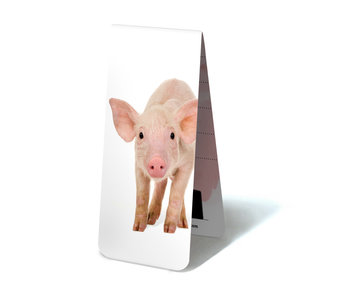 Magnetic Bookmark, Piggy