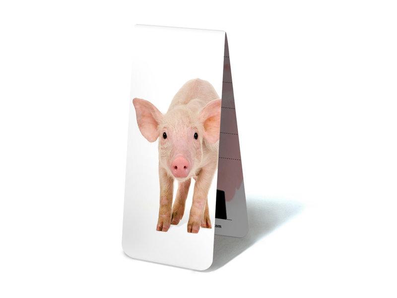 Magnetisches Lesezeichen, Schwein