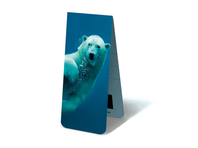Magnetic Bookmark, Polar bear swimming
