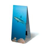 Magnetische Boekenlegger, Haai