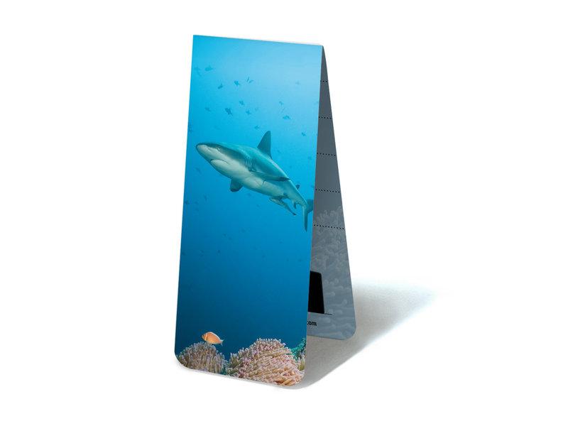 Marque-page magnétique, requin