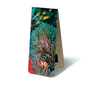Marque-page magnétique, poisson clown, mer tropicale