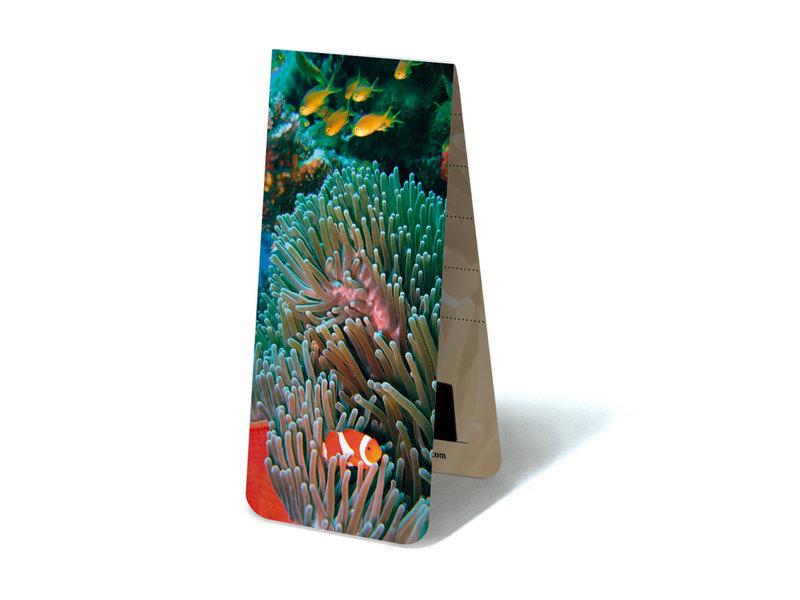 Magnetic Bookmark, Clownfish, tropical sea