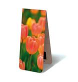 Marcador magnético, tulipanes naranja claro