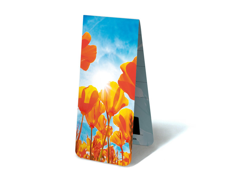Magnetic Bookmark, Tulips red yellow with sun