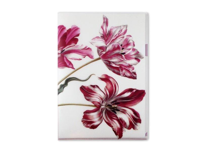 L-Ordner A4-Format, Merian, Drei Tulpen