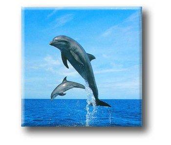 Aimant de réfrigérateur, dauphins