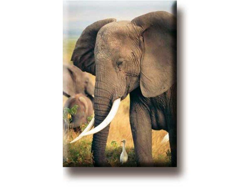 Imán de nevera, elefante