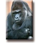 Aimant de réfrigérateur, Gorilla