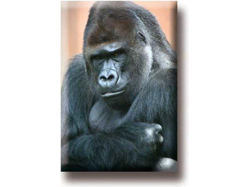 Imán de nevera, gorila