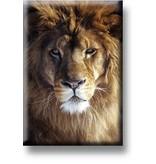 Aimant de réfrigérateur, tête de lion