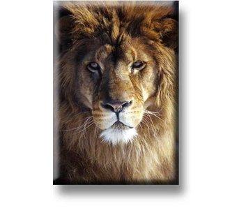 Imán de nevera, cabeza de león
