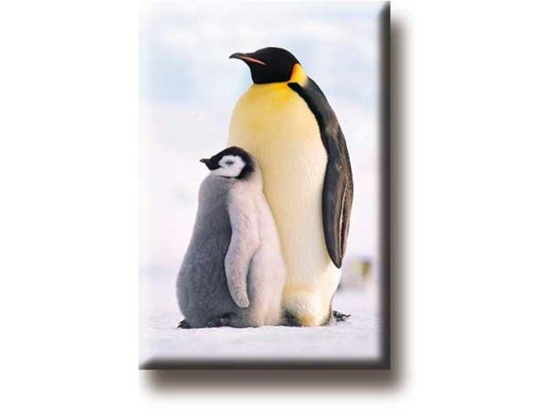 Kühlschrankmagnet, Pinguine