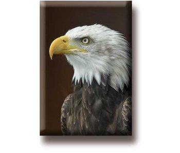 Imán de nevera, águila