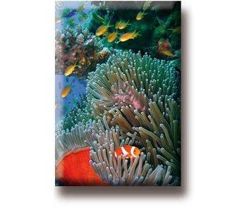 Imán de nevera, pez payaso, mar tropical