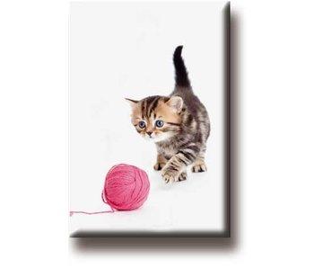 Koelkastmagneet, Kat met bolletje wol