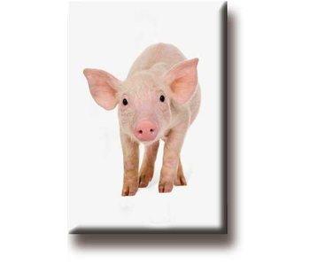 Aimant de réfrigérateur, cochon, porcelet