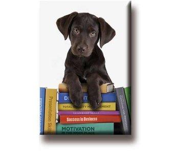 Imán de nevera, cachorro en libros