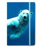Cuaderno de tapa blanda, oso polar