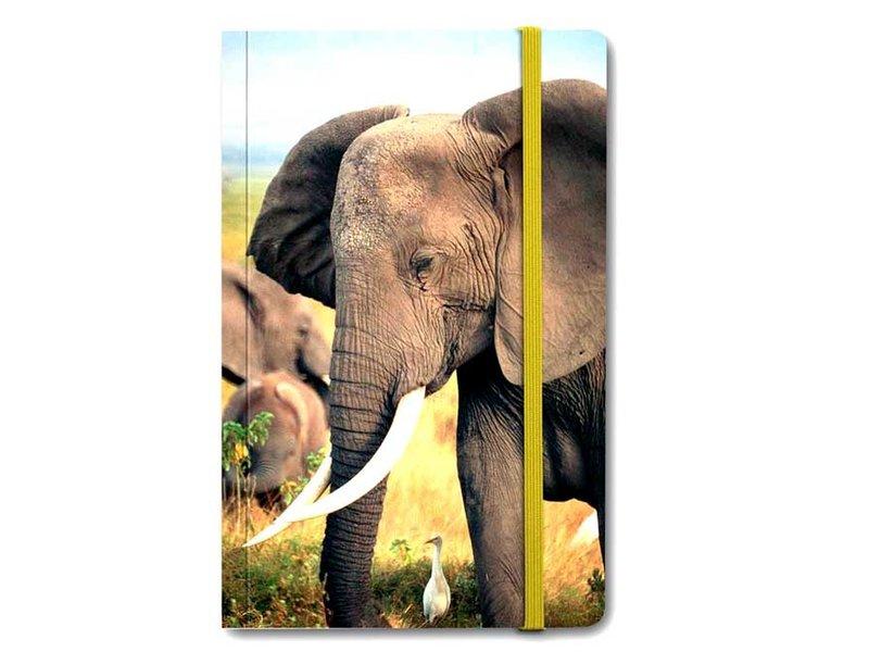 Softcover Book, Elephant