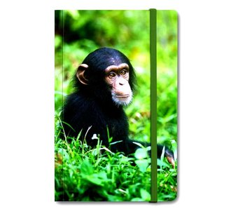 Softcover notitieboekje A6,  Baby Chimpansee