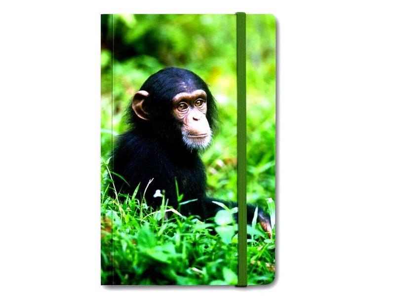 Softcover-Notizbuch, Baby Schimpanse