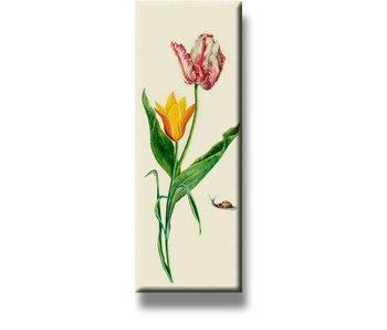 Imán de nevera, dos tulipanes y caracol