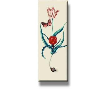 Imán de nevera, dos tulipanes y mariposa