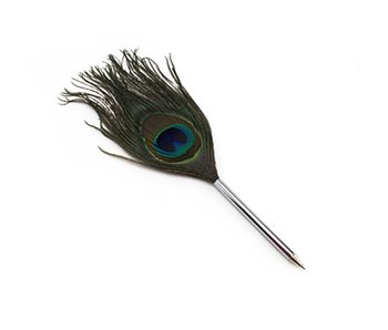 Quill pen, Peacock