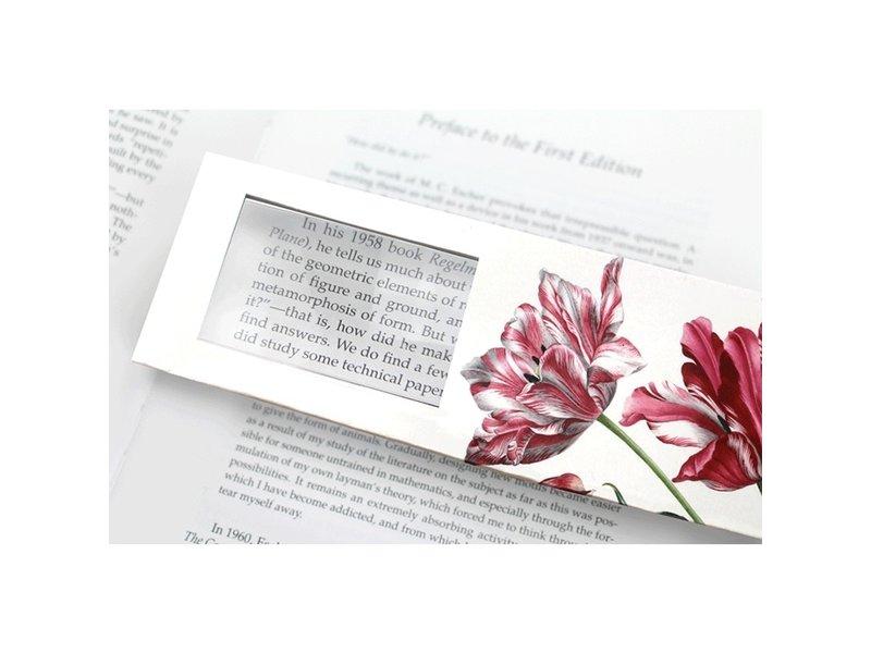 Lesezeichen mit Lupe, Drei Tulpen, Merian