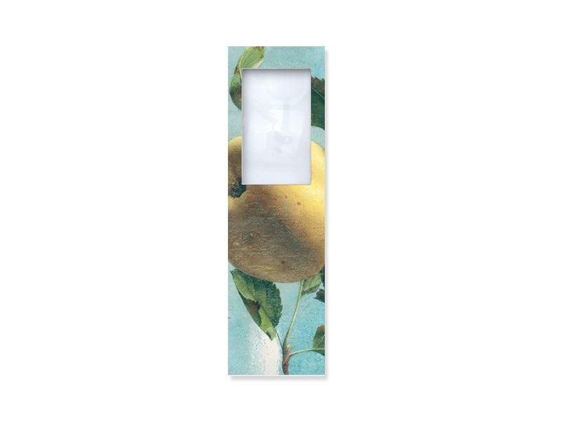 Magnifying Bookmark, Apple, Koch