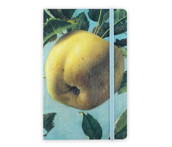 Cuaderno de tapa blanda, Apple, Koch