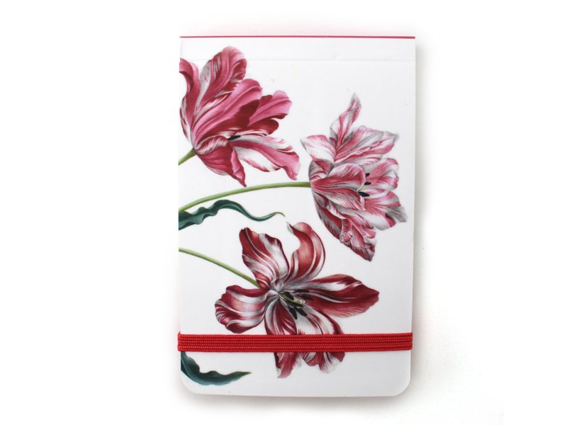 Pocket Note, Drie tulpen, Merian (Teylers)