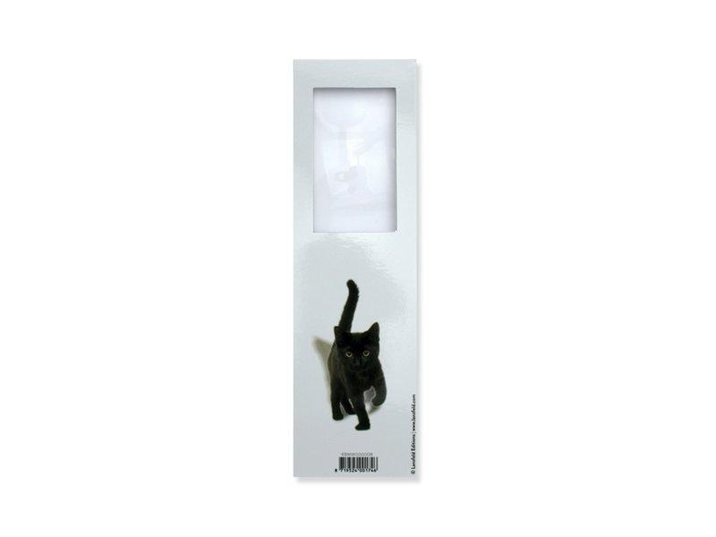 Magnifying Bookmark, Kitten