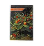 Postkarte mit Erdbeersamen, Schlesinger