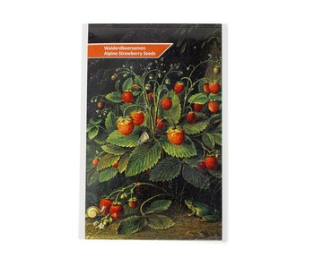 Postcard with strawberry seeds, Schlesinger