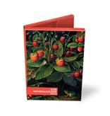 Kartenmappe, Schlesinger, 2x5 Doppelkarten
