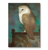 Poster, 50 x 70, Große Eule auf dem schirm, Jan Mankes