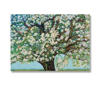 Plakat, 50 x 70, Beemster, blühender Baum, Toorop