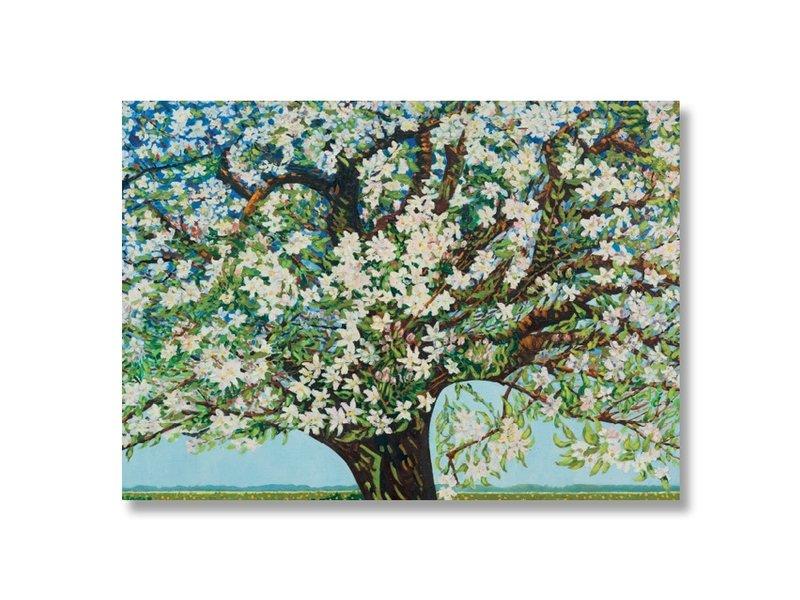 Affiche, 50 x 70, Beemster, arbre en fleurs, Toorop