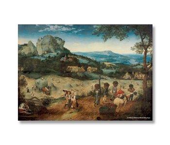 Cartel, 50x70, Bruegel, henificación