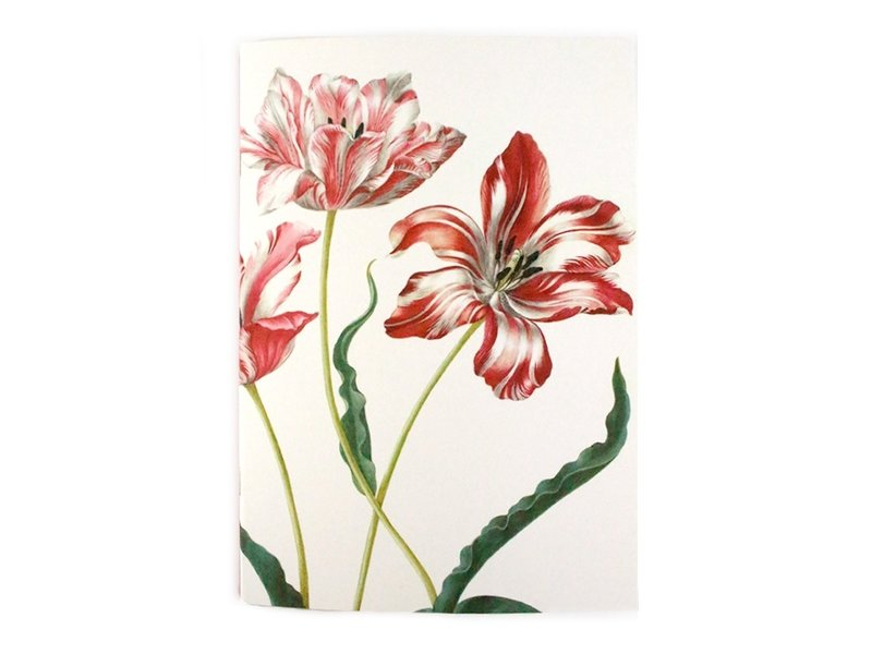 Exercise book W, A5, Merian, Three Tulips