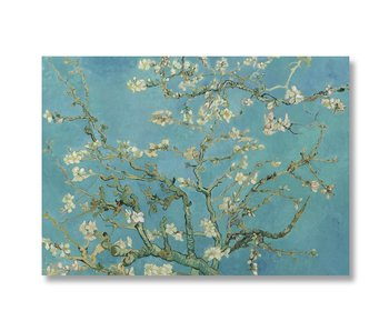 Poster 50x70, Amandelbloesem, Van Gogh