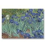 Poster, 50x70 Irissen Van Gogh