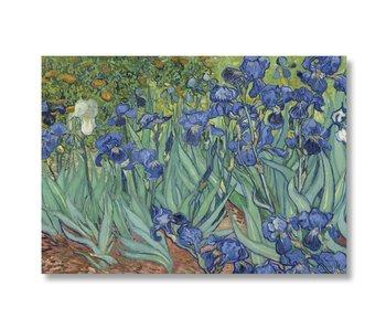 Plakat, 50x70 Iris Van Gogh